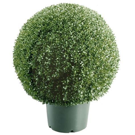 tree balls national tree company 22 in mini boxwood ball shaped artificial topiary tree in 9 in round