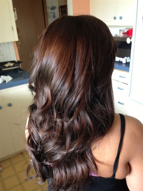 Darkest Shade Of Brown Hair by 25 Best Ideas About Brown Hair On