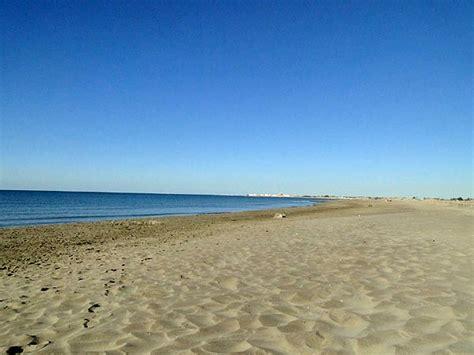 chambre d hote saintes photos camargue en provence