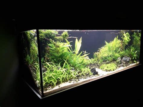 aquarium 500 liter 500 liter aquascape1 2 by creathor aquarium aquarium