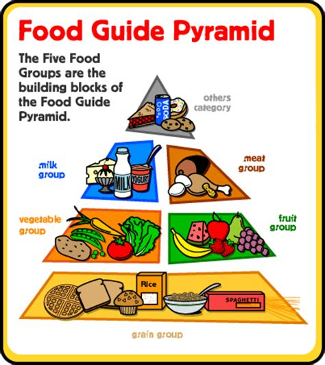 healthy food free printable easy science words 135 | good food types