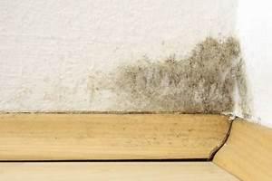 Luftfeuchtigkeit Wohnung Normal : schimmelbefall in zimmerecke ~ Frokenaadalensverden.com Haus und Dekorationen