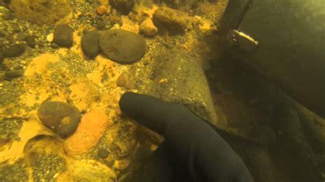 underwater gold dredging  hd  nugget finds