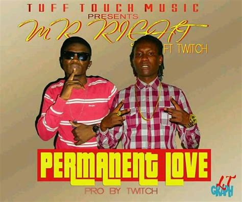 Download Mr Right Ft Twitch  Permanent Love