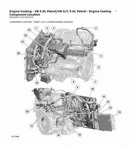 Jaguar Xf Cooling System - Jaguar Forums