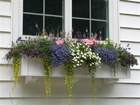 Window Planters by Flower Boxes Window Box Planters Pvc Wood Iron
