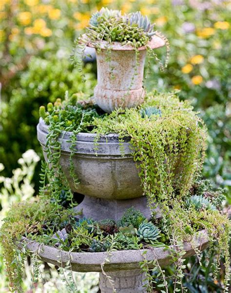 cascading succulent plants 1000 images about bird bath fountains on pinterest tree trunks birds and bird perch