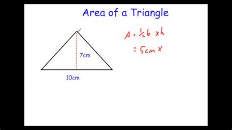 How To Area Of A Triangle Area Triangle Related Keywords Suggestions Area
