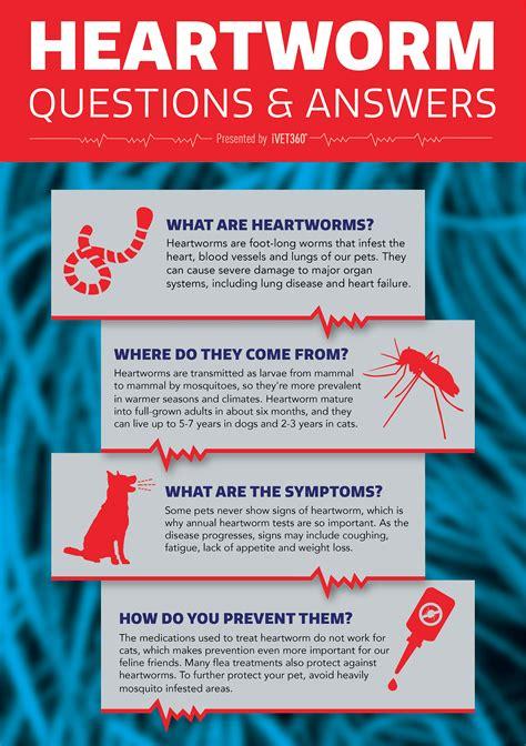 national heartworm awareness month april ivet
