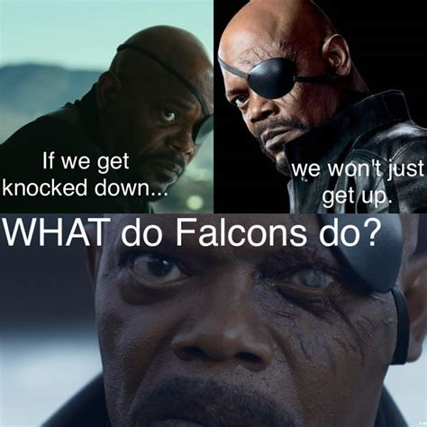 Falcon Memes - best 25 falcons memes ideas only on pinterest netball clubs near me sam quek team gb and