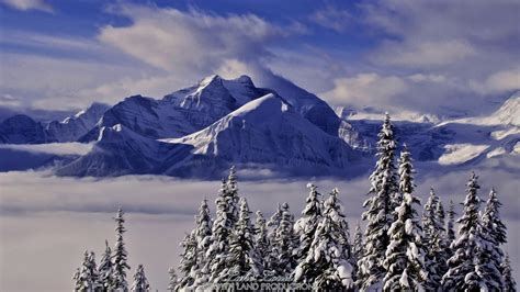 Winter On Mount Rundle  Crown Land Productions