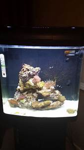 100 Litres Kent Marine Bio Reef Aquarium