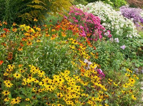 floraisons d automne arbustes vivaces bulbes