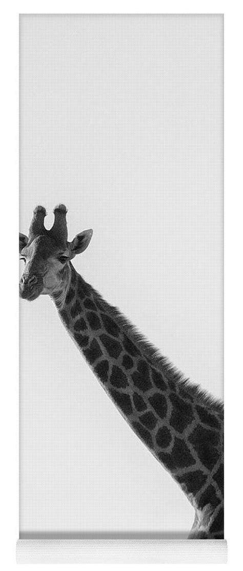I Am A Giraffe Yoga Mat for Sale by Patricia Hofmeester