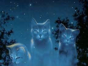 warriors cats which warrior cat are you from the journey