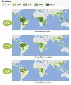 Deforestation Map Related Keywords - Deforestation Map ...
