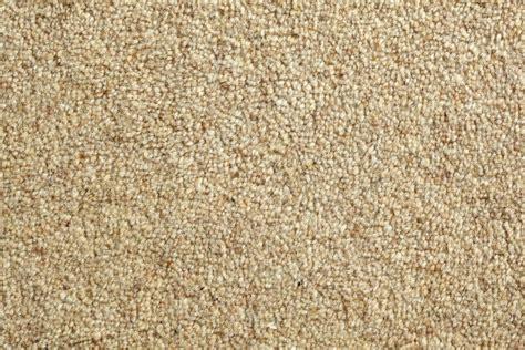 Carpet Background White Carpet Texture