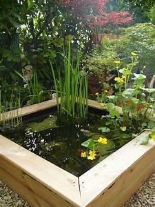 Bassin De Terrasse : bassin en terrasse album photos les passions de kathy ~ Premium-room.com Idées de Décoration