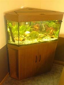 Aquarium 120l Mit Unterschrank : tieranzeigen eckaquarium kleinanzeigen ~ Frokenaadalensverden.com Haus und Dekorationen
