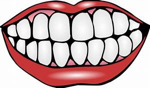 Mouth and Teeth Clipart | Clipart Panda - Free Clipart Images