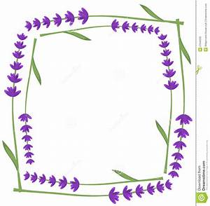 Lavender frame stock vector. Illustration of illustration ...