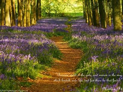 Christian Bible Verse Wallpapers Desktop Spring Quotes