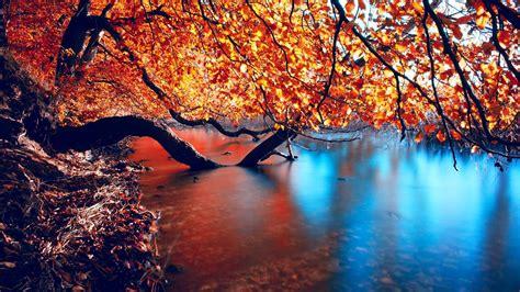 Autumn Wallpapers Hd by Autumn Wallpaper Hd