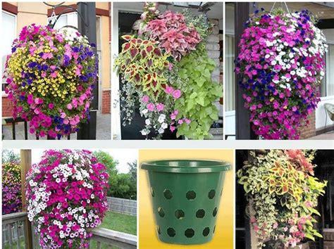 Hängende Blumen Balkon by Blumenel Garten Garten Garten Deko Und