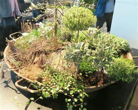 Pflanzen Für Miniaturgarten by Fr 246 Hlich Bepflanzter Miniaturgarten Mit Teich Und