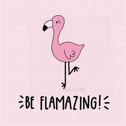 Flamingo Flamingos Quote Flamazing Quotes Sayings Puns