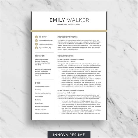 Resume Templates Modern by Modern Resume Template Innova Resume