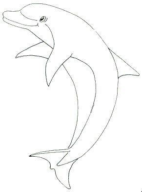 printable dolphin coloring pages dolphin coloring