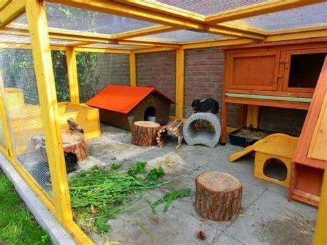 freigehege kaninchen selber bauen gartengehege bauen guinea pig garden ideas rabbit