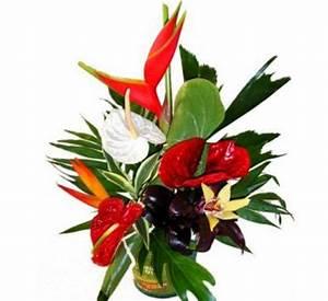 Bouquet De Fleurs Pas Cher Livraison Gratuite : composition de fleurs exotiques livraison sur nancy ~ Teatrodelosmanantiales.com Idées de Décoration