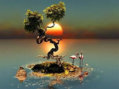 Fantasy Trees Landscape Tree Wallpapers Artwork Nature