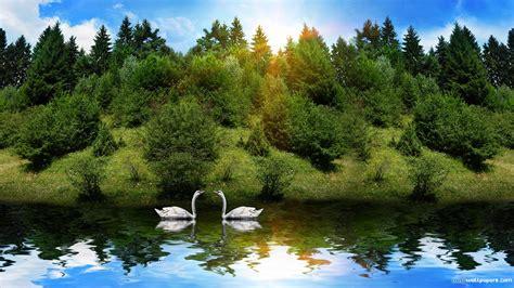 Nature Wallpaper Hd Desktop