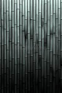 Bambou Noir Prix : fond en bambou noir et blanc photo stock image du bambou noir 20588342 ~ Teatrodelosmanantiales.com Idées de Décoration