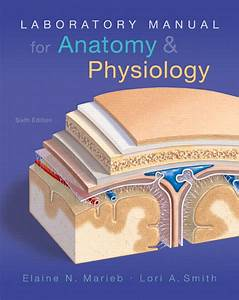 Marieb  U0026 Smith  Laboratory Manual For Anatomy  U0026 Physiology