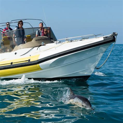 Boat Trip Cornwall by Surf Lessons Sup Hire And Boat Trips In Cornwall