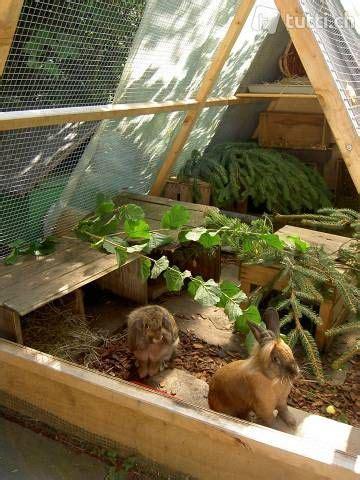 außengehege kaninchen kaufen kaninchen meerschweinchen gehege kleintieraus in z 252 rich kaufen tutti ch awesomeness