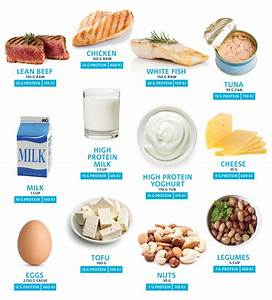 What Food Groups Contribute to Protein – The Total Wellbeing Diet Protein Diet