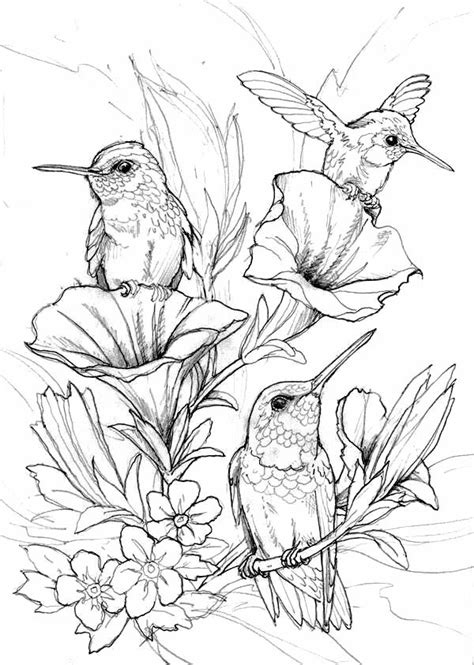 hung birds coloring page coloring pages coloring pages