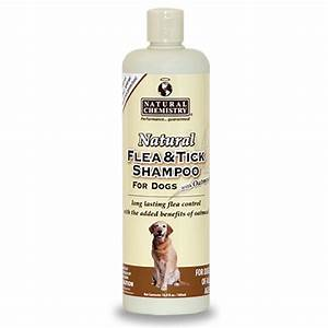 M: 4-Legger Certified, organic Dog Shampoo - all Natural