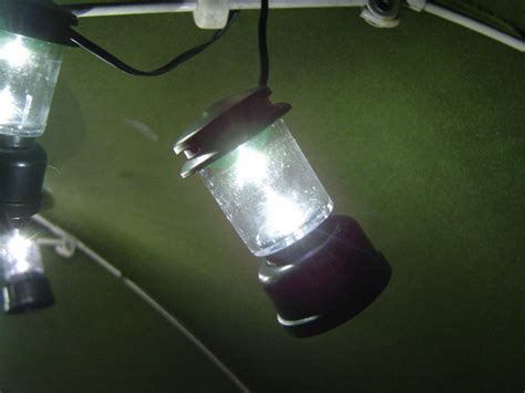 new coleman string lights 10 cing garden led mini