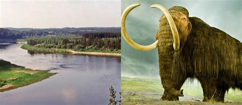 Mamuti Latvijā - Spoki