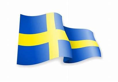 Flag Sweden Swedish Vector Background Illustrations Waving