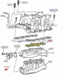Brand New Oem Intake Manifold Gasket 4 6l  5 4l Ford