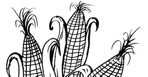 gambar mewarnai jagung