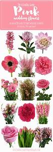 The Essential Pink Wedding Flowers Guide: Types of Pink ...