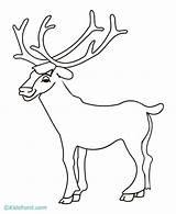 Elk Coloring Bull Pages Drawing Head Simple Printable Sketch Horns Template Getdrawings Popular Getcolorings Library Clipart sketch template